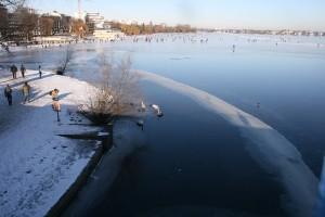 im-winter-alster-zugefroren-schwaene-hunger